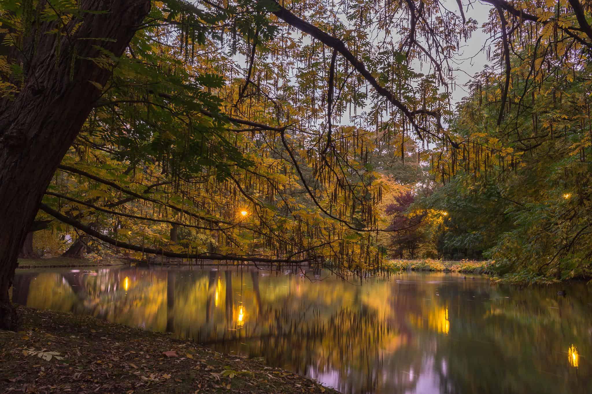 park oliwski jesien woda pomysły na zdjęcia jesienią