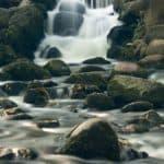 Park Oliwski Sierpień Woda 16 of 18 150x150 - Czas naświetlania czyli czas otwarcia migawki
