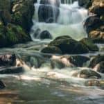 Park Oliwski Sierpień Woda 18 of 18 150x150 - Czas naświetlania czyli czas otwarcia migawki