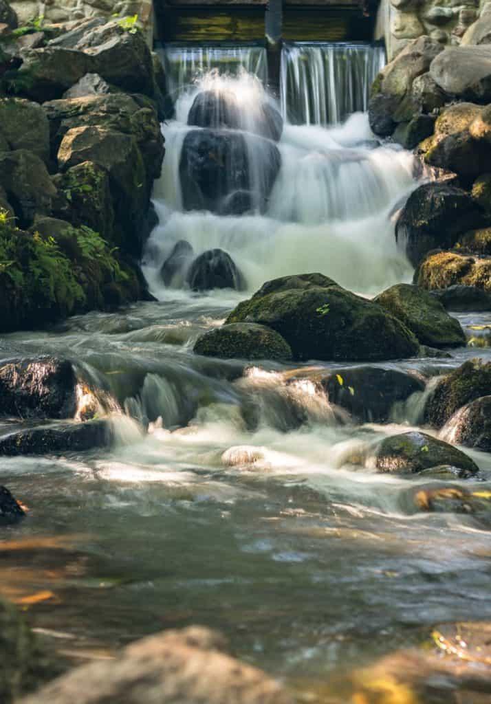 Park Oliwski Sierpień Woda 18 of 18 714x1024 - Rodzaje fotografii jakie powinno się znać