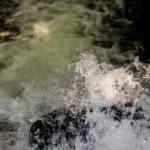 Park Oliwski Sierpień Woda 9 of 18 150x150 - Czas naświetlania czyli czas otwarcia migawki