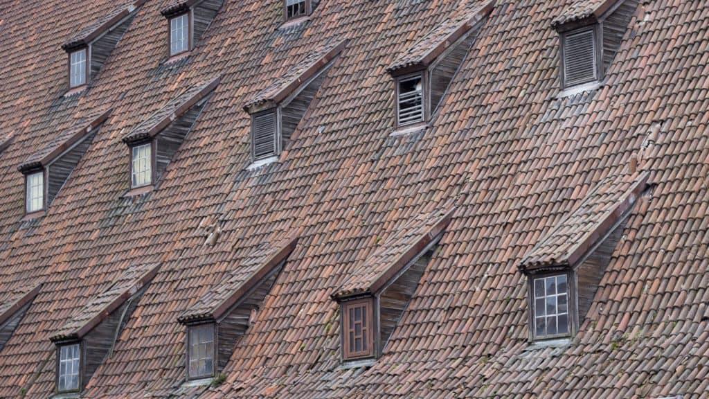 Fotografia Uliczna Gdańsk 3 1024x576 - Rodzaje fotografii jakie powinno się znać