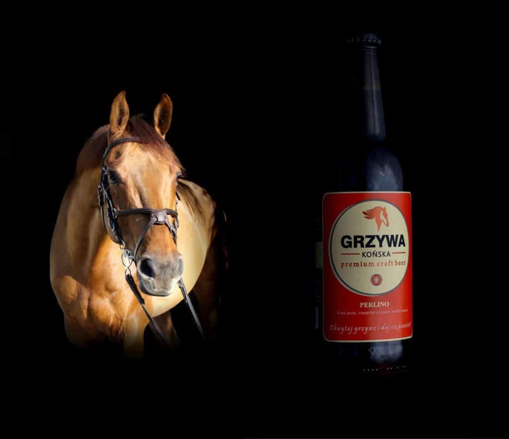 Fotografia produktowa butelki piwa Końska Grzywa 3 1024x885 - Konkursy fotograficzne to rozwój kreatywności