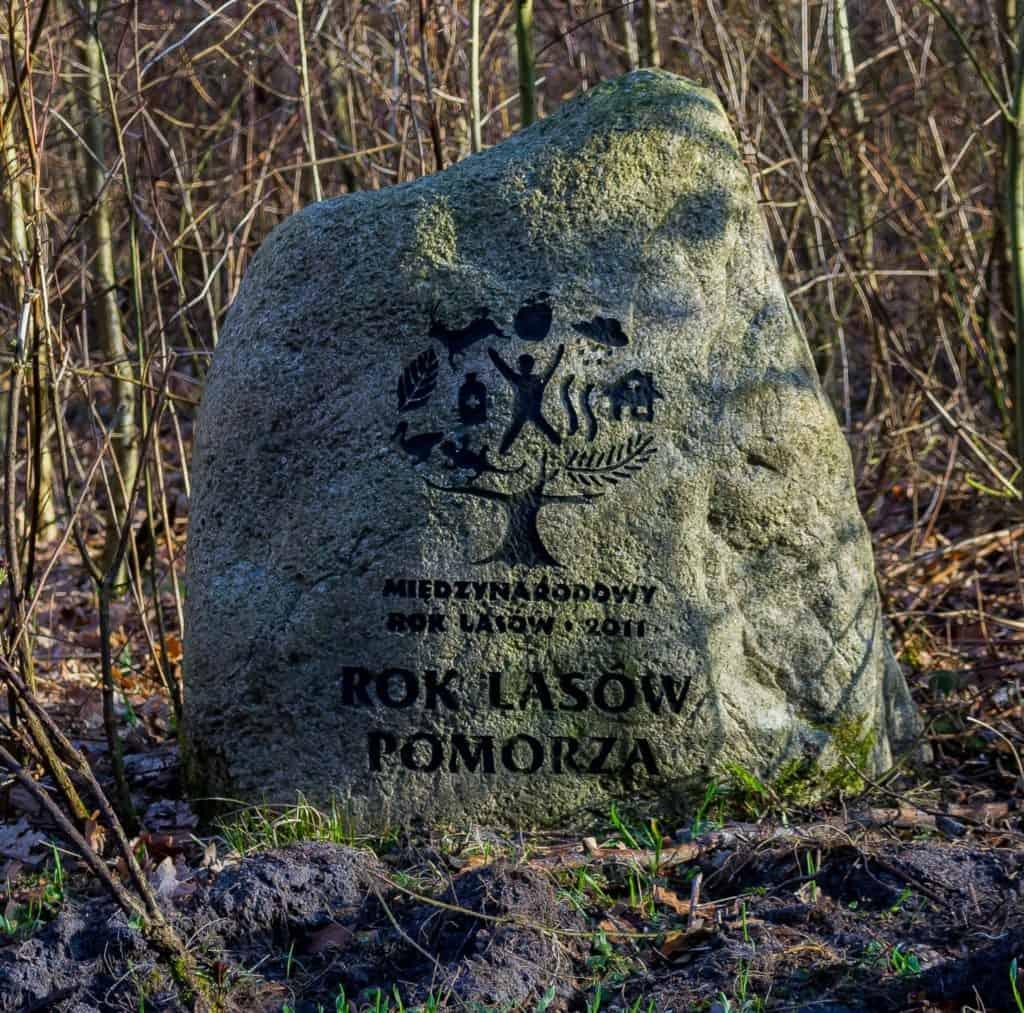 Fotografia przyrodnicza Lasy Oliwskie Wiosna 2019 kamień pamiątkowy 1024x1013 - Fotografia w lesie oraz makrofotografia natury
