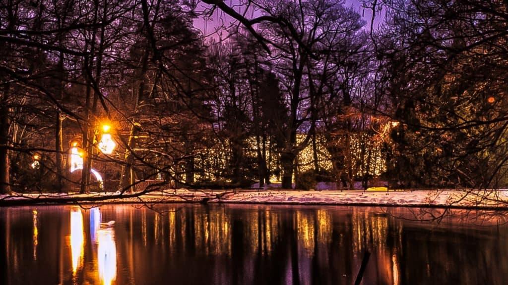 Kadrowanie zdjęcia w fotografii 16x9 panoramiczne Park Oliwski-1