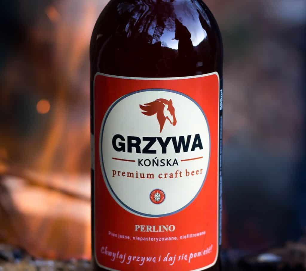 Końska Grzywa na grilla. 21 1024x910 - Fotografia produktowa butelki piwa