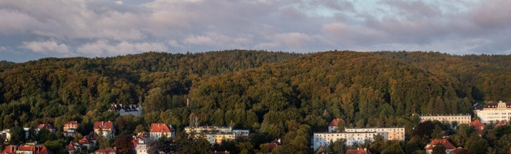 Wyzwanie fotograficzne tydzień z aparatem droga do pracy jesienna panorama w Oliwie