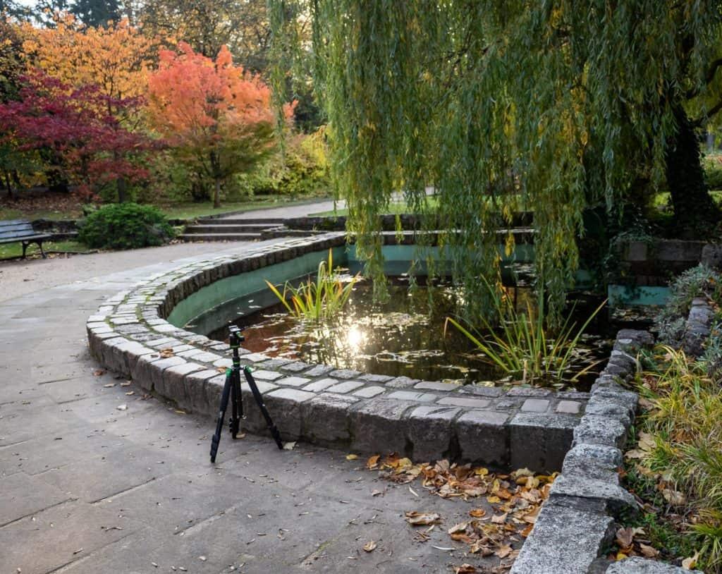 Fotografia lustrzana i odbicia jesień w parku oliwskim w Gdańsku 2 1024x814 - Fotografia lustrzana i odbicia