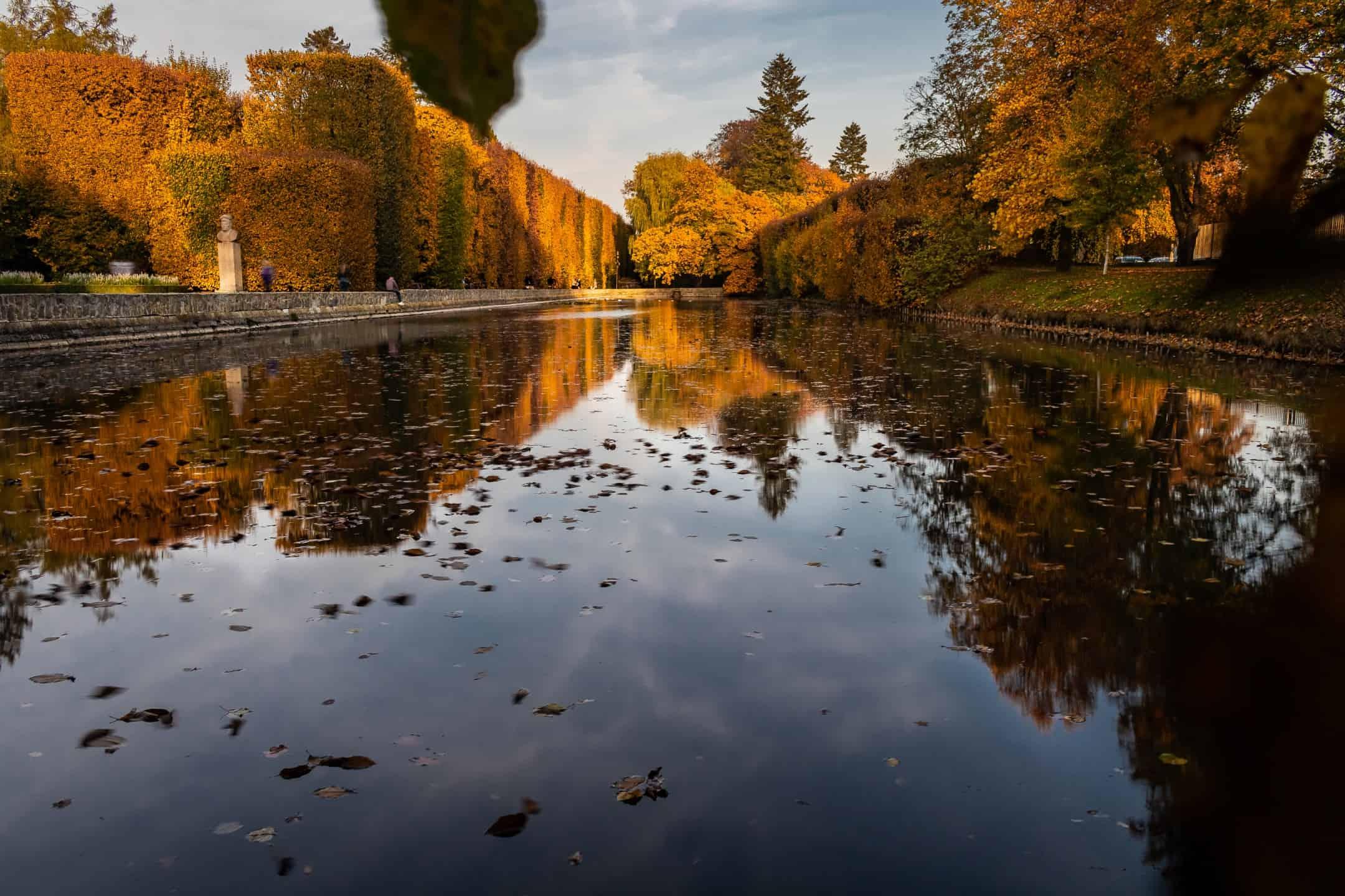Krajobraz jesienny -Park Oliwski w Gdańsku, Październikowe złota godzina
