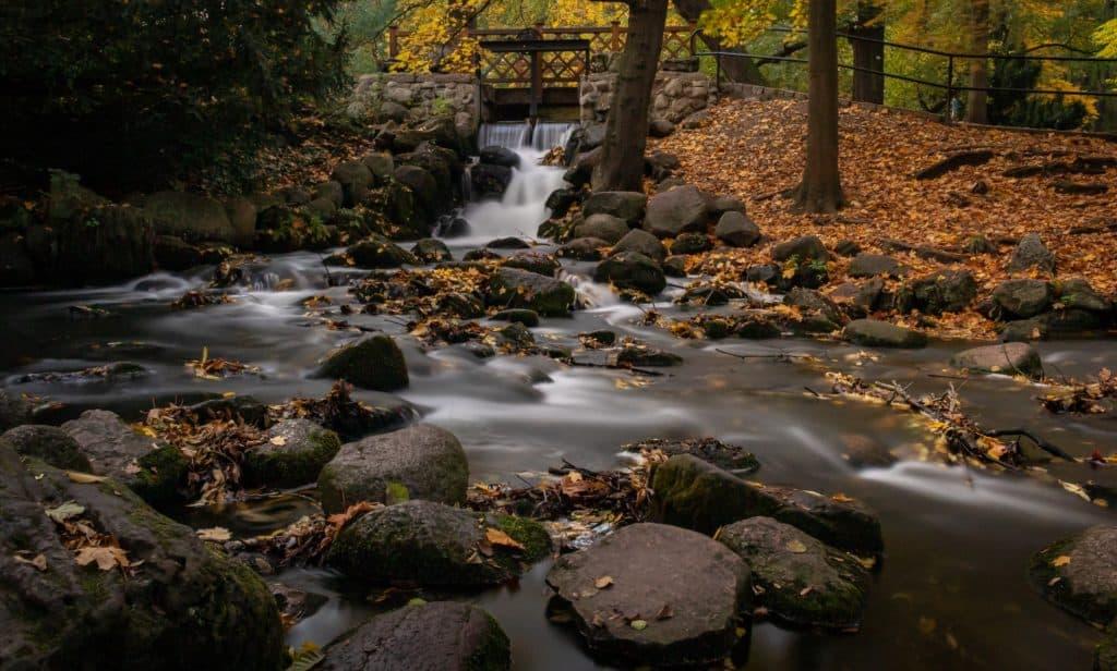 Krajobraz jesieni 12 1024x616 - Krajobraz jesienny - Gdańska jesień