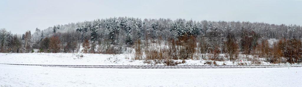 Zimowy krajobraz w Gdansku Kielpinek Park Krajobrazowy 1 1024x296 - Rękawiczki fotograficzne pgytech - 5 ważnych zalet
